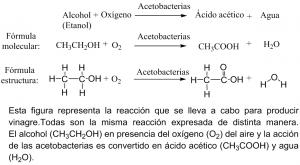reaccionobtenciondelvinagre2