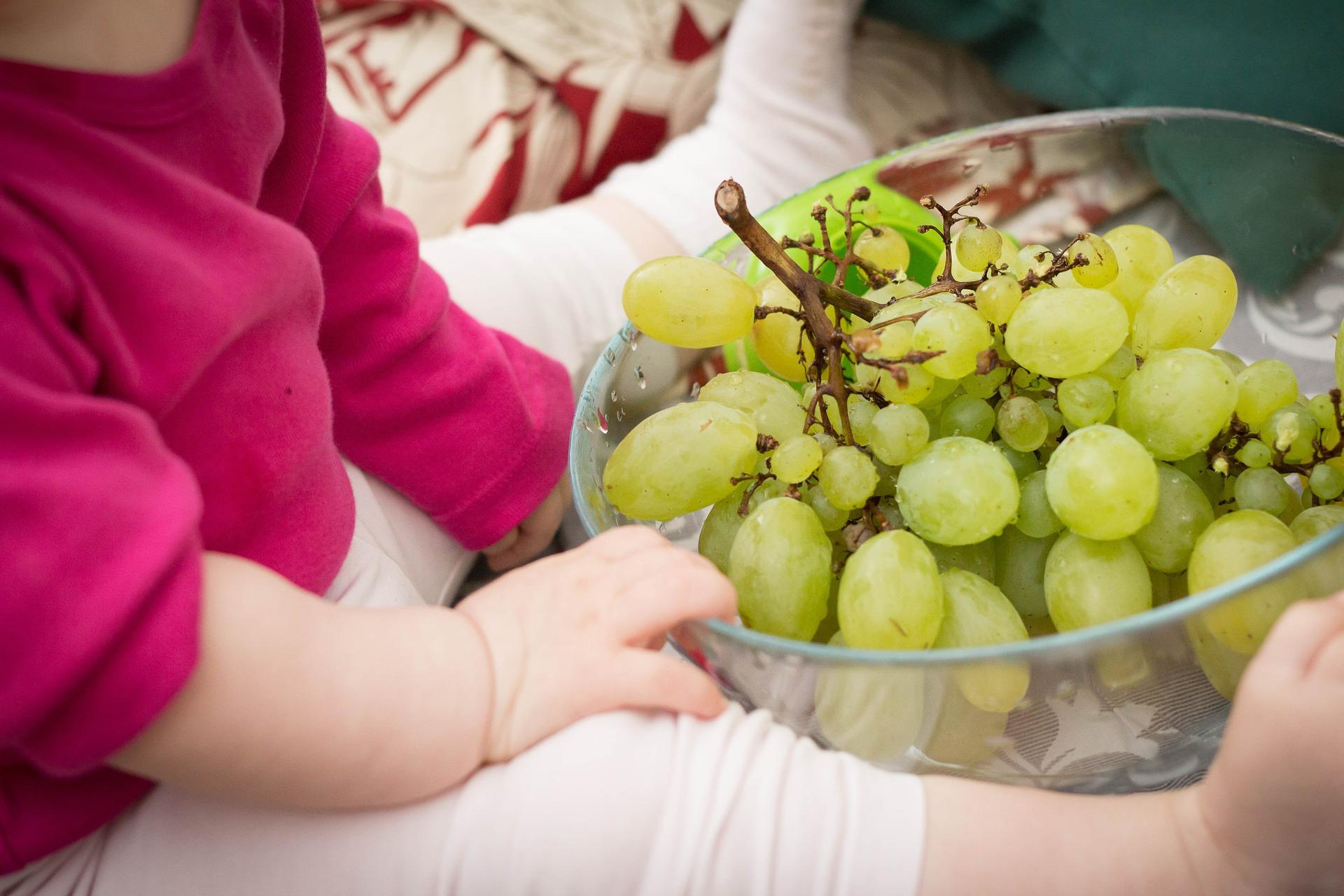Recomendaciones de comida para bebés que empiezan a comer1 (2)