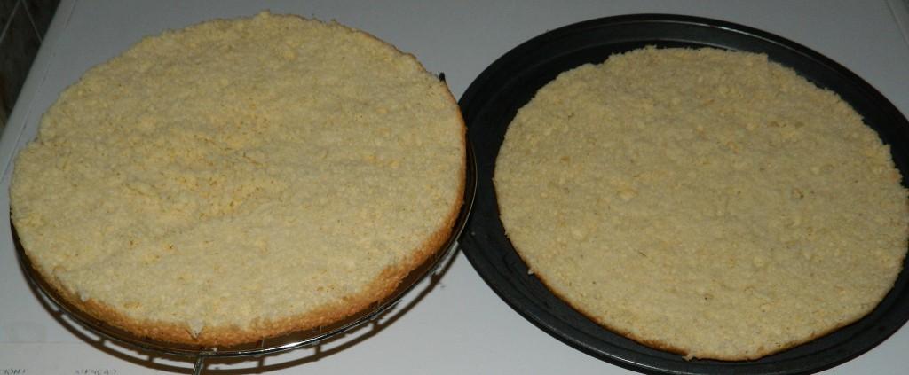 bizcocho base 1