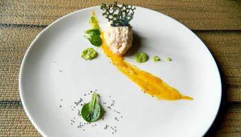 paté de atún, hummus de guisantes, crema de boniato 2_opt