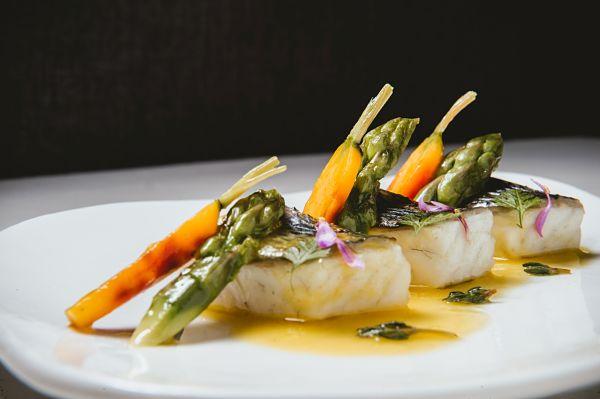 fotos de gastronomía José Salto
